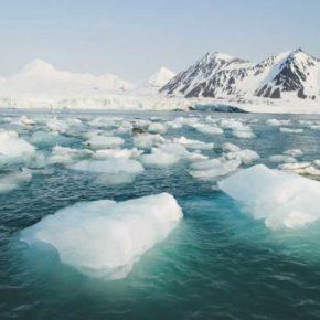 El calentamiento de los océanos [declaración escrita de Carolina Punset]