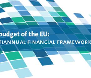 Javier Nart 'Nos hemos abstenido ante un informe de marco financiero sin ambición, que no mejorará la confianza en las instituciones europeas'