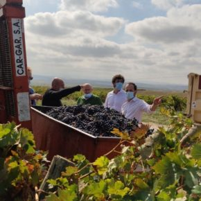 Cs pide a la UE un apoyo decidido al sector del vino porque su situación es grave y está en riesgo la campaña de Navidad